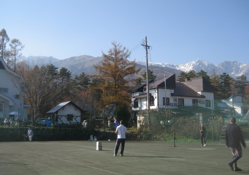 Cricket in Hakuba
