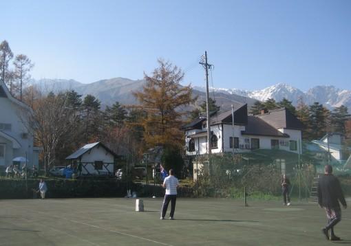 Cricket in Hakuba