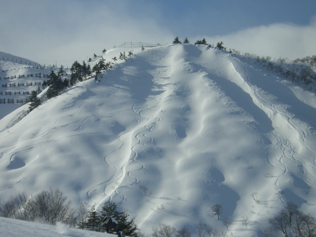 Hakuba fresh tracks