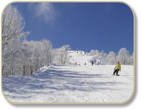 Hakuba47 Ski Area