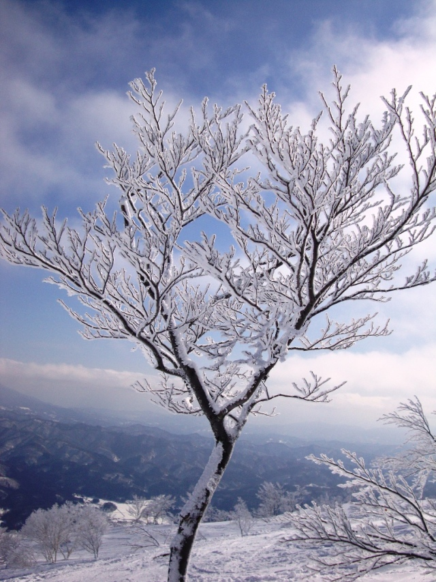 Hakuba 47 and Blue Skies