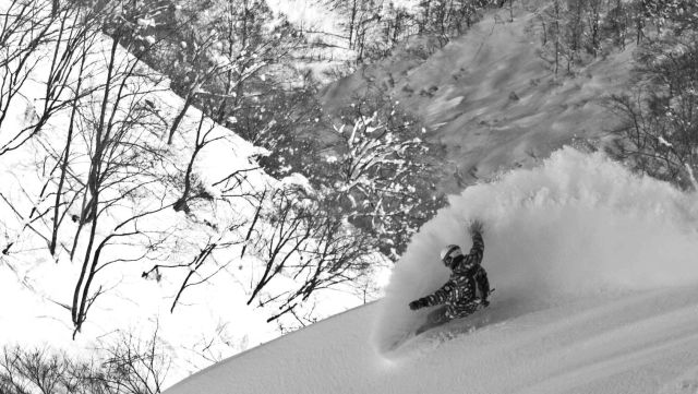 Hakuba powder