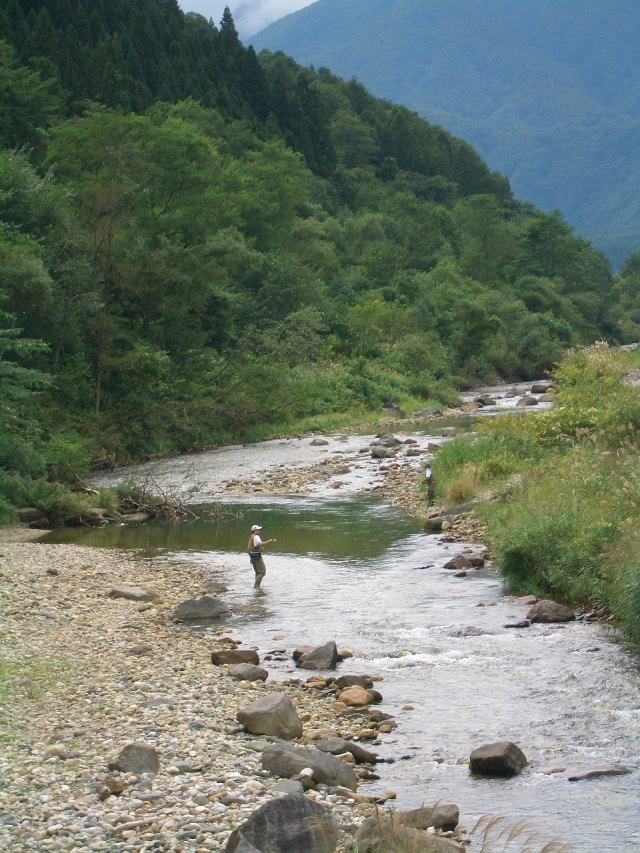 Fly fishing in Japan