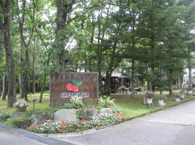 Pub in Hakuba
